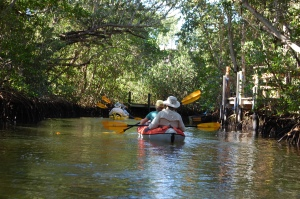 Kayaking Sanibel Canals