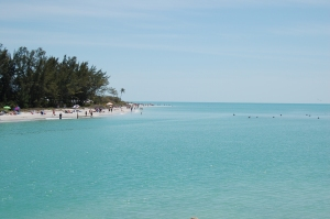 Taking a Dip in the Beautiful Waters of Blind Pass. Between Sanibel and Captiva Islands. (Click to Enlarge.)